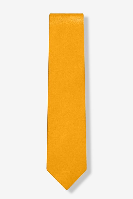 Artisans Gold Skinny Tie Photo (1)