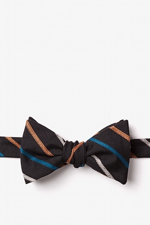Houston Butterfly Bow Tie