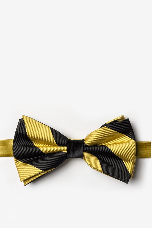 Black & Gold Stripe Pre-Tied Bow Tie Photo (0)