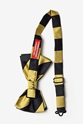Black & Gold Stripe Pre-Tied Bow Tie Photo (1)