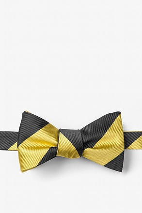Black & Gold Stripe Self-Tie Bow Tie