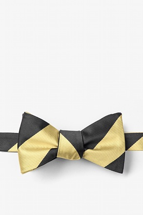 Black & Gold Stripe Butterfly Bow Tie