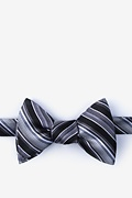 Black Silk Moy Bow Tie