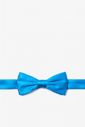 Blue Aster Bow Tie For Boys