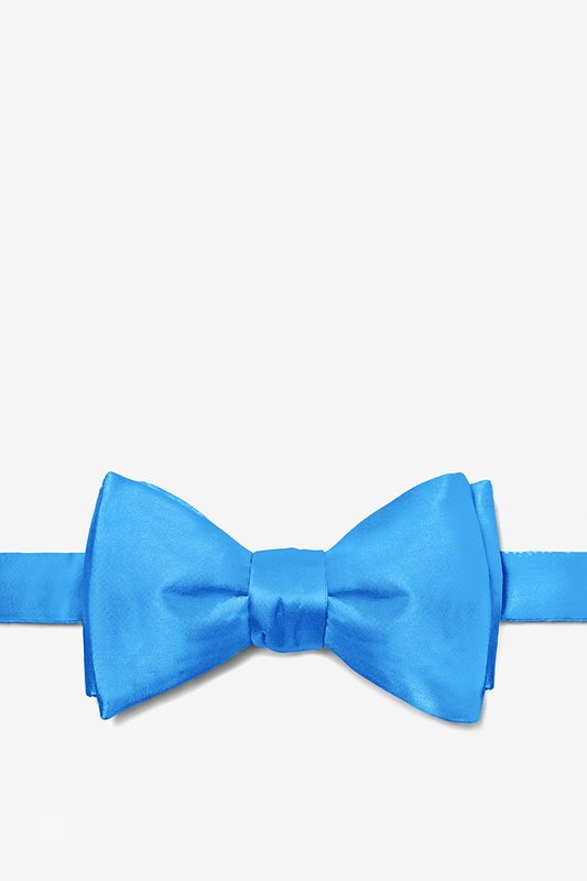 Blue Aster Butterfly Bow Tie