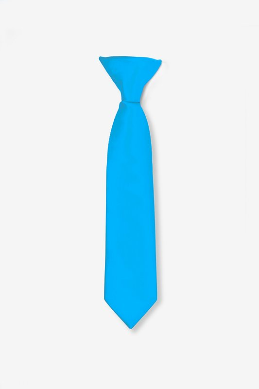 Blue Aster Clip-on Tie For Boys Photo (0)