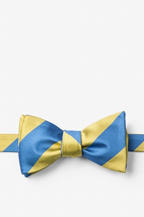 _Blue & Gold Stripe Self-Tie Bow Tie_