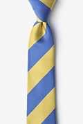 Blue & Gold Stripe Skinny Tie Photo (0)