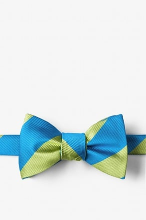 Blue & Lime Stripe Self-Tie Bow Tie