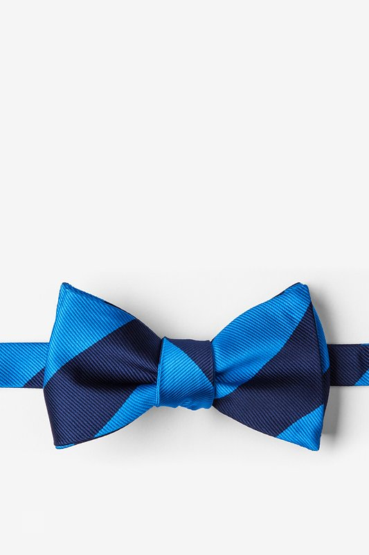 Blue & Navy Stripe Self-Tie Bow Tie Photo (0)