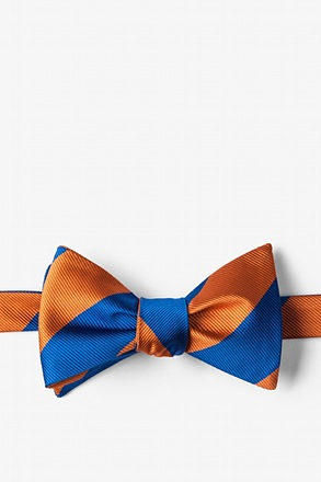 _Blue & Orange Stripe Self-Tie Bow Tie_