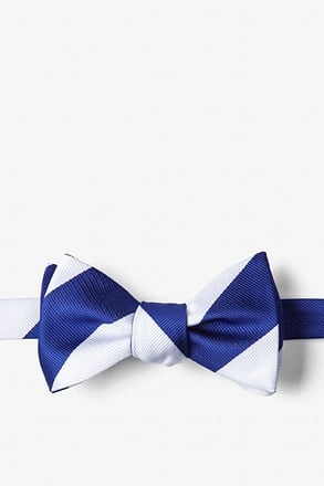 _Blue & White Stripe Self-Tie Bow Tie_