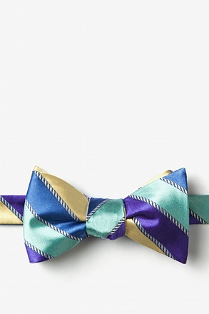 _Know the Ropes Blue Self-Tie Bow Tie_