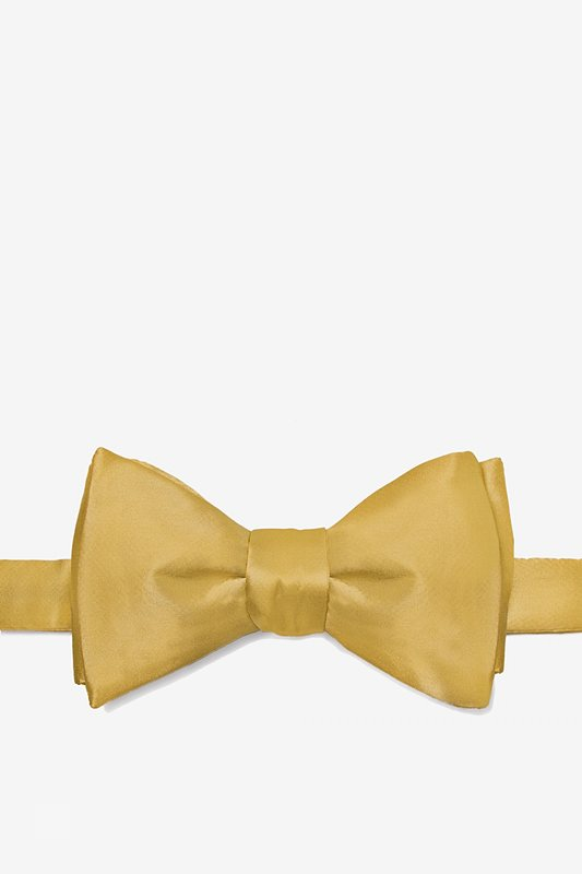 Bright Gold Self-Tie Bow Tie Photo (0)