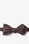 Brown Cotton Glendale Diamond Tip Bow Tie