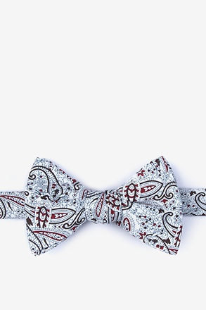 _Hale Brown Self-Tie Bow Tie_