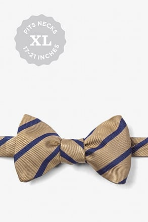 Brown Balboa Stripe Bow Tie