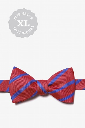 Burgundy Balboa Stripe Butterfly Bow Tie