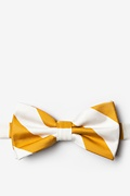 Burnt Orange Microfiber Burnt Orange & White Stripe Pre-Tied Bow Tie