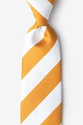 Burnt Orange Microfiber Burnt Orange & White Stripe Tie