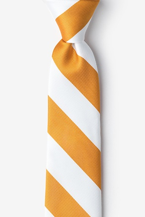 _Burnt Orange & White Stripe Tie For Boys_