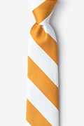 Burnt Orange Microfiber Burnt Orange & White Stripe Tie For Boys