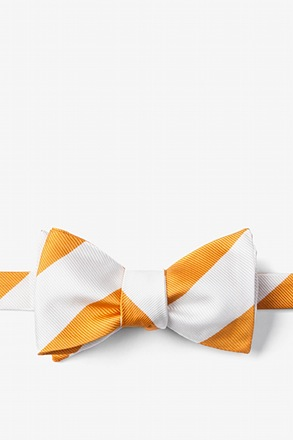 Burnt Orange And White Stripe Butterfly Bow Tie