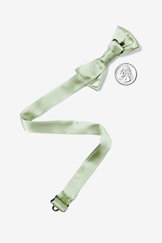 Celadon Green Bow Tie For Boys Photo (1)