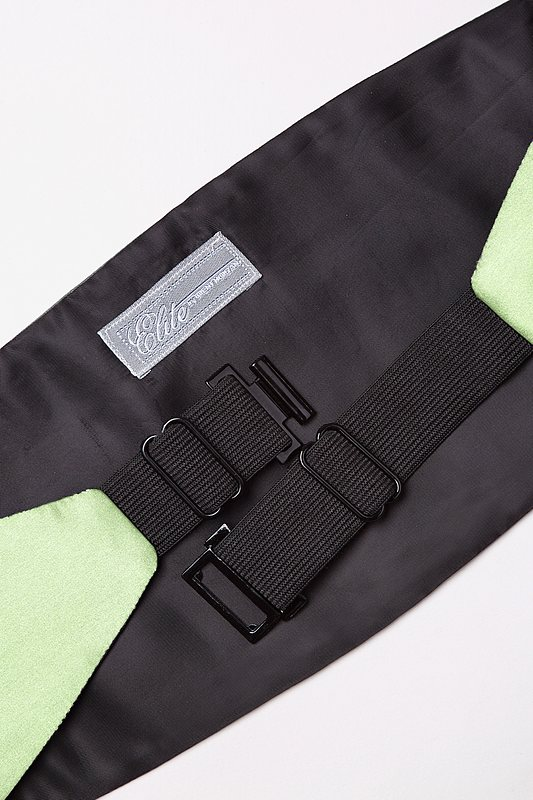 Celadon Green Cummerbund Photo (1)
