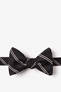 Seagoville Butterfly Bow Tie