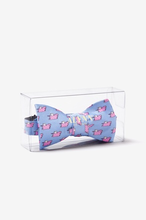 Alynn Bow Tie Display Box