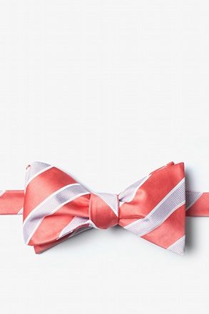Jefferson Stripe Self-Tie Bow Tie