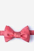 Coral Silk Griffin Self-Tie Bow Tie