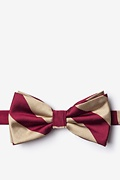 Crimson & Cream Stripe Pre-Tied Bow Tie Photo (0)