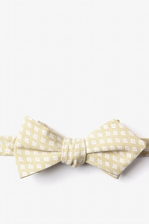 Poway Gold Diamond Tip Bow Tie
