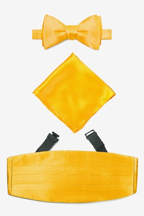 _Artisans Gold Self Tie Bow Tie Cummerbund Set_