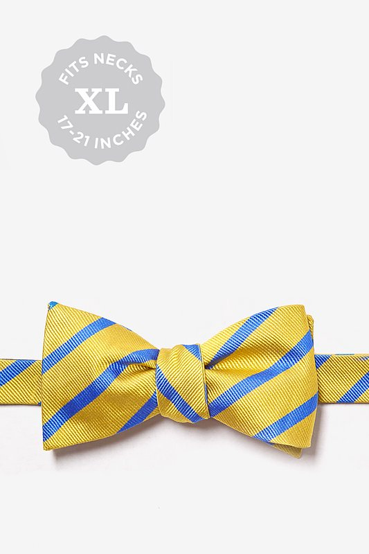 Gold Balboa Stripe Butterfly Bow Tie