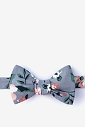 Gray Cotton Holden Butterfly Bow Tie