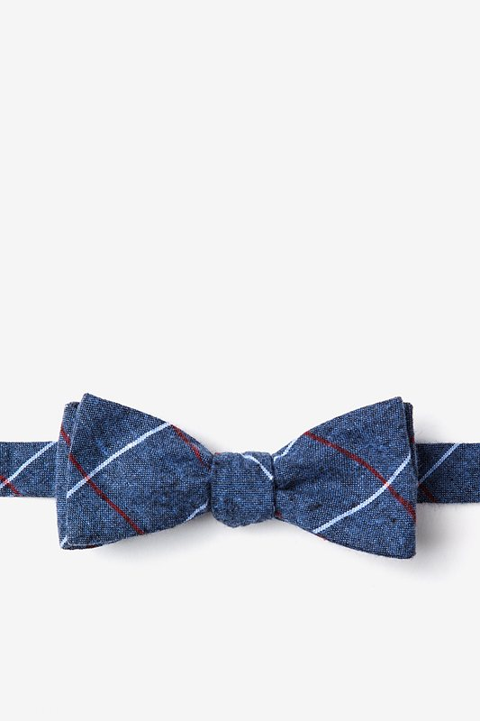 Phoenix Gray Skinny Bow Tie Photo (0)