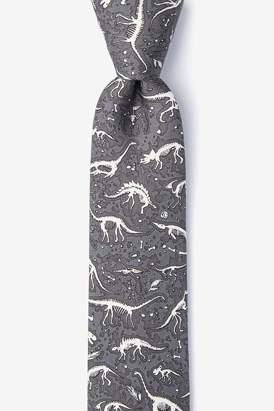 Gray Dig Fossils Skinny Tie Photo (0)