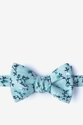 Green Cotton Hoyt Bow Tie