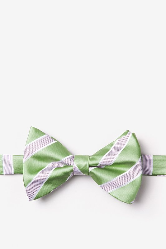 Jefferson Stripe Green Pre-Tied Bow Tie Photo (0)