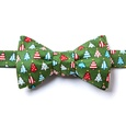 Pa-tree-otic Self Tie Bow Tie by Alynn Bow Ties