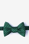 Green Silk Robe Bow Tie