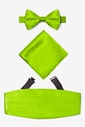 Lime Green Silk Lime Green Pretied Bow Tie Cummerbund Set