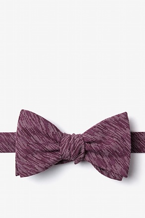 Springfield Butterfly Bow Tie