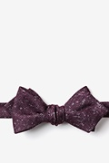 Wilsonville Diamond Tip Bow Tie Photo (0)