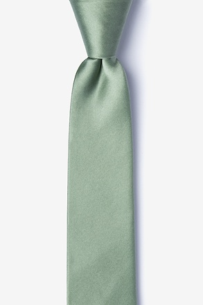 ec78e45d3c77 Solid Skinny Ties & Neckties | Ties.com