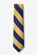 Navy & Gold Stripe Navy Blue Skinny Tie Photo (1)