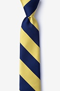 Navy & Gold Stripe Navy Blue Skinny Tie Photo (0)